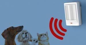 Sensore animali domestici